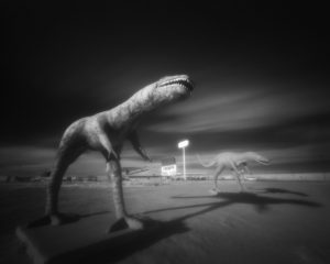 I-40 Raptors Pinhole, Edition 1 of 3