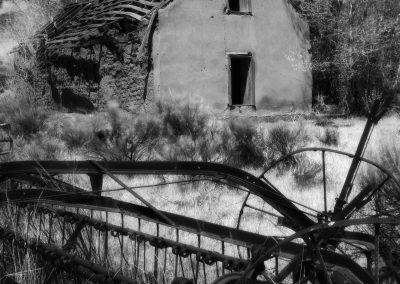 Tierra Amarillo House 2020, Edition 1 of 3
